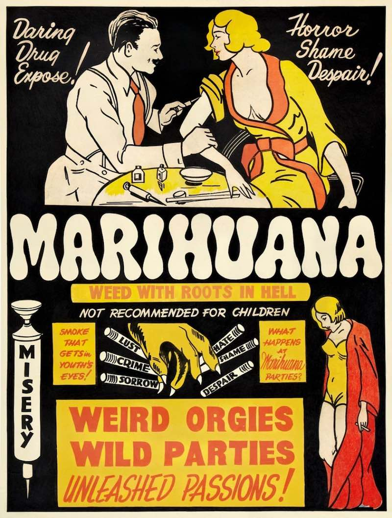 """Should cannabis be considered """"drugs""""?"""