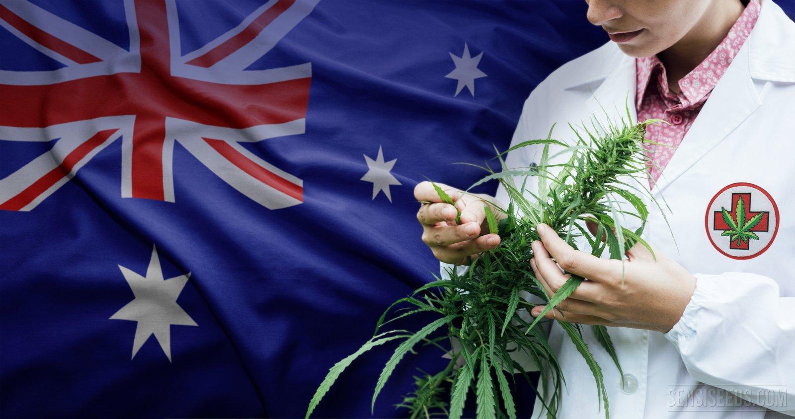 Australian flag cannabis hemp oil