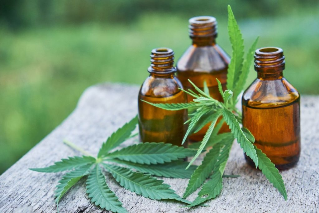 Hemp leaf and bottles of hemp oil