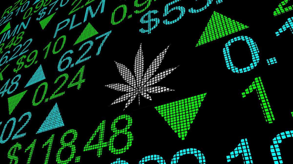 Cannabis Stocks